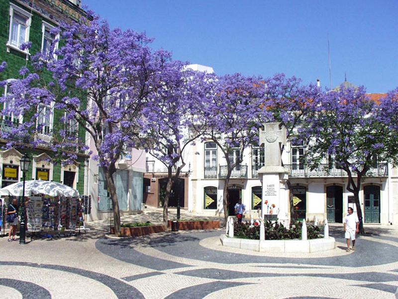 Hotel Luz De Mar